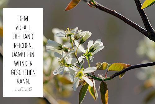 Mama gedicht geburtstag 50 Zum 50.